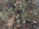 Sand from Aberdeen beach